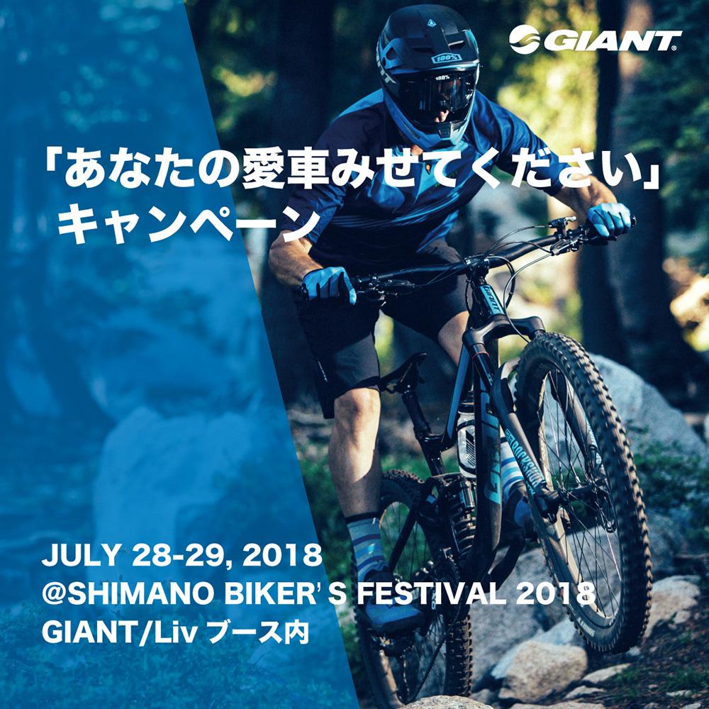 Bikers_G_1
